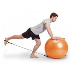 large gym ball with handles cm