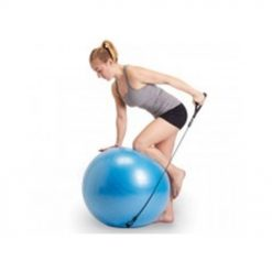 medium gym ball with handles cm