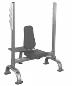 Impulse IT7031 Seated Shoulder Press Bench