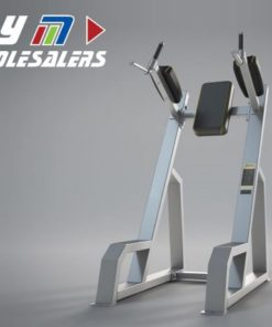LifeTrac Platinum Series Vertical Knee Raise - Dip