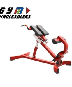LifeTrac Solid Series Back Extension