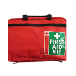 First Aid Kit Essential Bag with Handles x