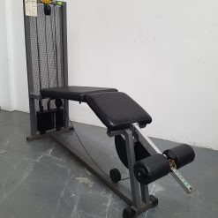 Technogym Lying Leg Curl